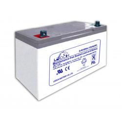 Аккумулятор Leoch 65Ач 12В AGM